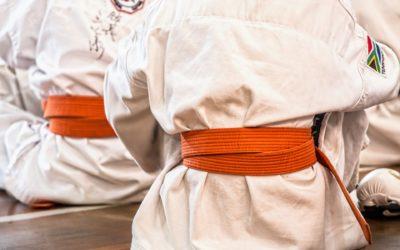 Dojo Ju Jitsu